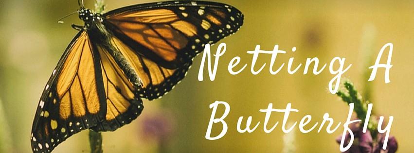 Netting A Butterfly